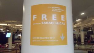Free Exhibition Curated by Sarah Lucas